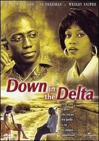 copertina Down in the delta [DVD]